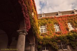 Rathaus-Abtei-im-Herbst