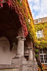 Rathaus-im-Herbst (Kopie)