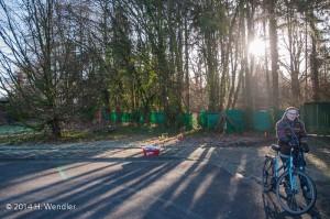 von Rhodung bedrohtes Waldstück in Giesenkirchen-0060