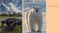 Bild links: Kohlekraftwerk Niederaussem. © Andrew Kerr / WWF-Canon; Bild rechts:  Eisbär (Ursus maritimus)